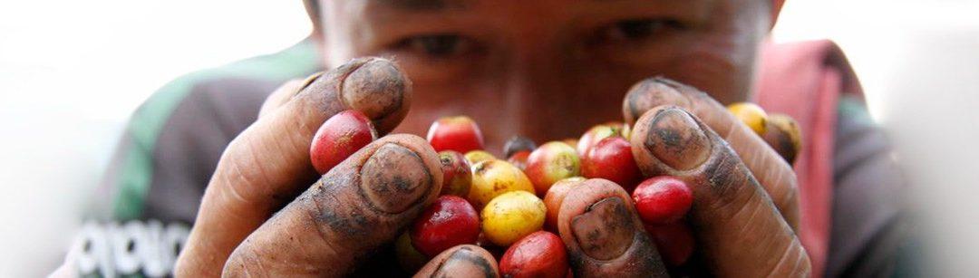 Culminó el primer Foro Mundial de Productores de Café